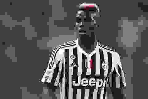 Vì sao Manchester United cần Paul Pogba?