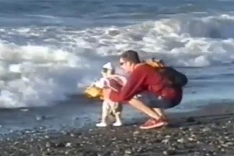 Nghẹt thở với những pha bố cứu con thoát nạn