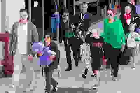 Brad Pitt và Angelina Jolie có thể tái ngộ dịp lễ Tạ Ơn