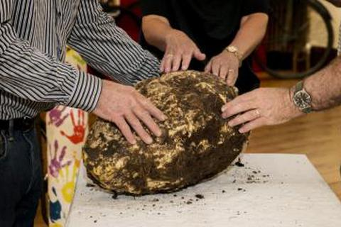 Tìm thấy bơ tiền sử 2000 tuổi vẫn ăn được