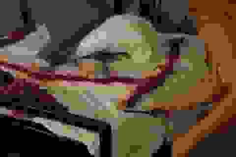 """Thót tim cảnh cô gái đốt pháo trên giường để... """"đánh thức"""" bạn trai dậy"""