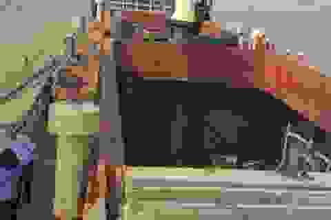 Một công nhân tử vong do rơi từ trên boong tàu xuống hầm hàng