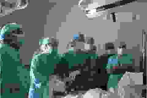 Những nghiên cứu về y dược xứng tầm quốc tế của các nhà khoa học Việt (phần 2)