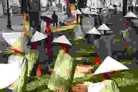 Lạ mắt với hình ảnh áo tơi, nón lá trên phố đi bộ quanh hồ Gươm