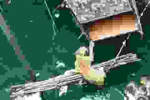 Màn giải cứu một con báo khỏi chết đuối đầy kịch tính
