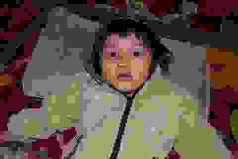 Bi đát bé 4 tuổi bị xuất huyết giảm tiểu cầu không tiền chạy chữa.