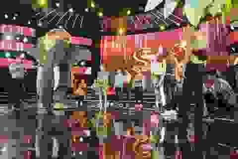 Bình Tinh mang voi khủng lên sân khấu