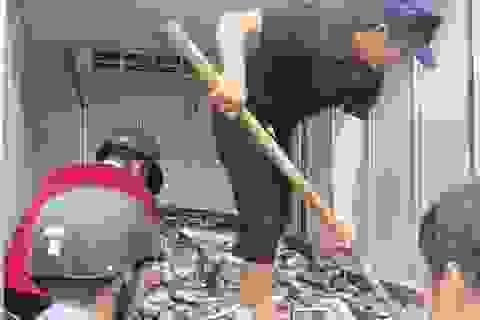 Hàng tấn cá nuôi, cá biển tiếp tục chết tại Thừa Thiên - Huế