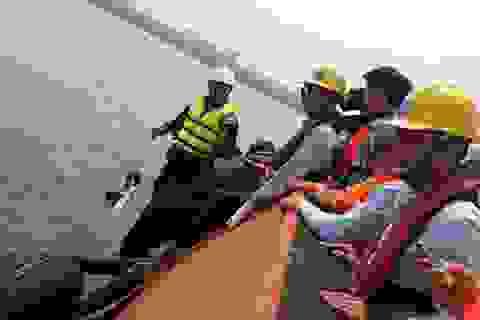 Thủ tướng yêu cầu báo cáo việc cấp phép, giám sát xả thải của Formosa