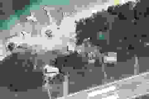Đài Loan nhờ Google làm mờ ảnh vệ tinh sau nghi vấn xây cơ sở quân sự trên đảo Ba Bình
