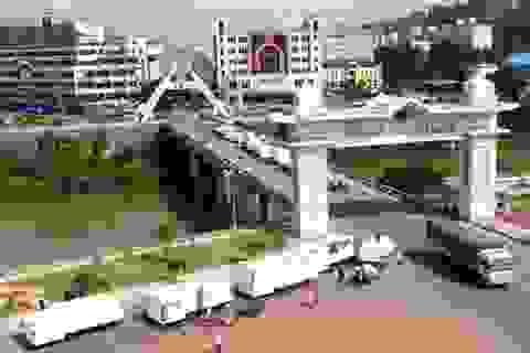 Thủ tướng Chính phủ quyết định mở rộng Khu kinh tế cửa khẩu Lào Cai