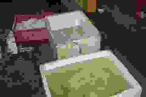 Ớn lạnh thịt trâu bò tẩy ướp hóa chất