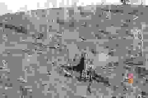 Vụ cháy rừng quốc gia Hoàng Liên được khống chế kịp thời