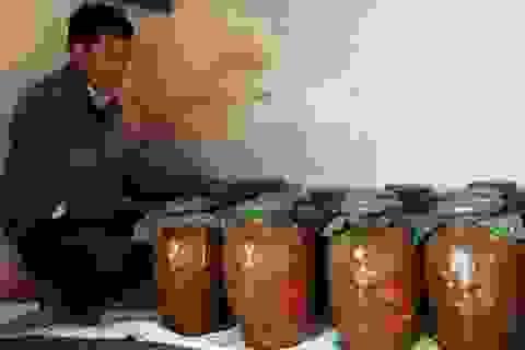 """Đắk Nông: Cận Tết Nguyên đán, rượu cần lại chuẩn bị """"du xuân"""""""