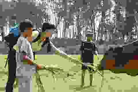 Vợ chồng Sỹ Toàn - Ngọc Tiên rủ nhau về Trà Vinh mò cua bắt ốc