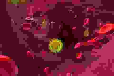 Người đầu tiên trên thế giới được chữa khỏi HIV