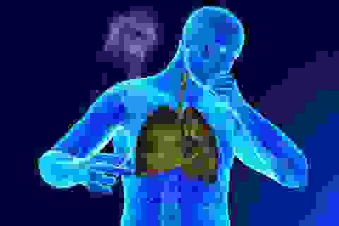 """3 cơ quan trong cơ thể bị thuốc lá """"đầu độc"""""""