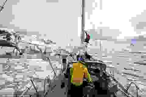 Nam Cực và những bức ảnh khiến ai cũng phải khát khao