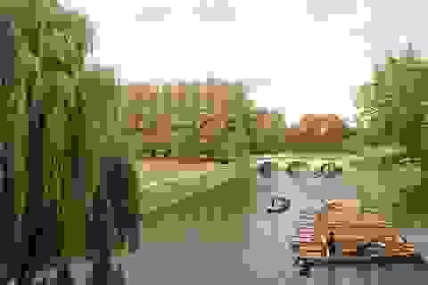 Cambridge - Những sáng chủ nhật tinh khôi