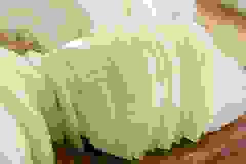 8 loại thực phẩm trong nhà bếp trị nốt côn trùng cắn