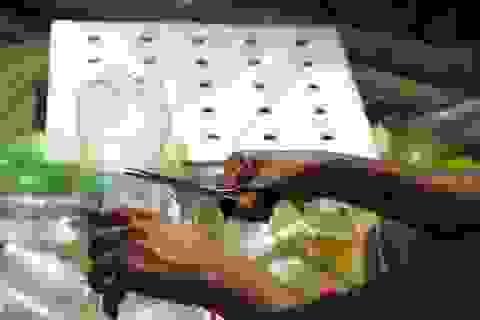 Làm máy lạnh sinh thái từ những chai nhựa