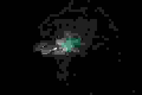 Google Earth phát hiện ra quái vật giống mực khổng lồ dài 120m?