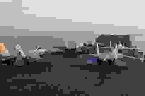 Trung Quốc đưa tàu sân bay ra tây Thái Bình Dương tập trận