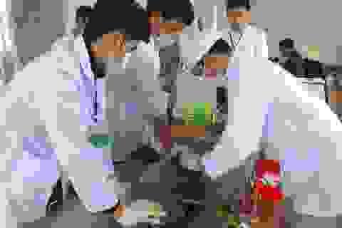Bình Định: 73 thí sinh đoạt giải nhất trong Hội thi tay nghề ngành Nông nghiệp
