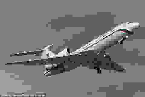Nhân chứng kể khoảnh khắc rơi kỳ lạ của máy bay Nga Tu-154
