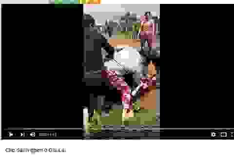Gia Lai: Đánh ghen kinh hoàng, cắt tóc nạn nhân