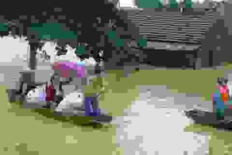 Thủ tướng duyệt chi 115 tỷ hỗ trợ 10 tỉnh bị bão, lũ