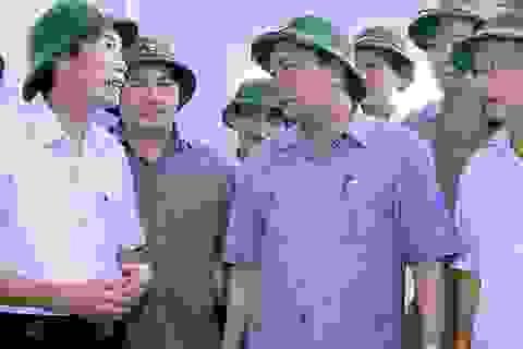 Thủ tướng: Rút kinh nghiệm sâu sắc về công tác dự báo bão