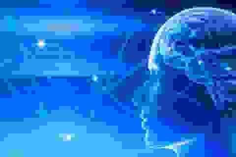 Các nhà khoa học khám phá liệu pháp điều trị bệnh não mới