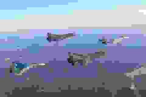 Nga bất ngờ gia tăng hoạt động khiến NATO bất an
