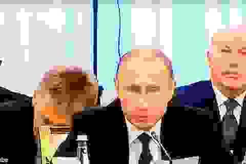 Quan chức ngủ gật trong cuộc họp của Tổng thống Putin