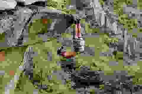 Rợn tóc gáy xem cảnh chàng trai treo mình trên vách đá