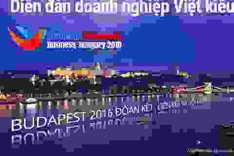Diễn đàn Doanh nghiệp Việt kiều Châu Âu lần thứ 10 tại Hungary