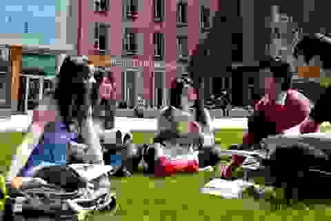 Học bổng Du học Mỹ 2016 – đảm bảo nhận đến 25.000 USD khi nộp qua Hợp Điểm