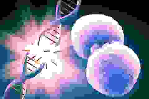 """Huy động """"sức mạnh"""" tự thải độc tế bào, ngăn ngừa ung bướu do thực phẩm bẩn"""