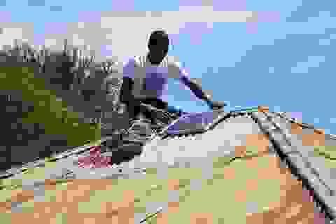Bẫy bắt muỗi sử dụng năng lượng mặt trời