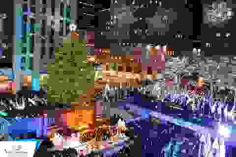 Đón Giáng sinh ở 6 thành phố Mỹ cùng Vietrantour