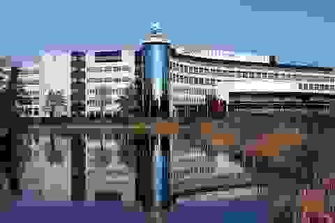 Học bổng nhiều, chất lượng cao, chi phí thấp tại Hà Lan