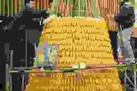 Cây thông Noel độc đáo làm từ… 3600 bắp ngô
