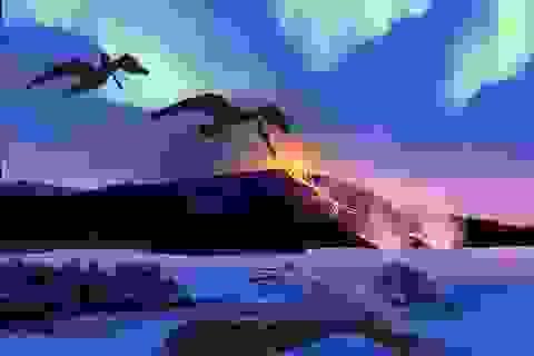 Khám phá mới về hóa thạch chim có tuổi thọ 90 triệu năm