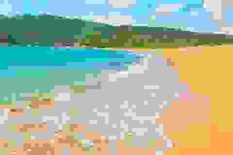 Những bãi biển nhiều màu sắc nhất hành tinh