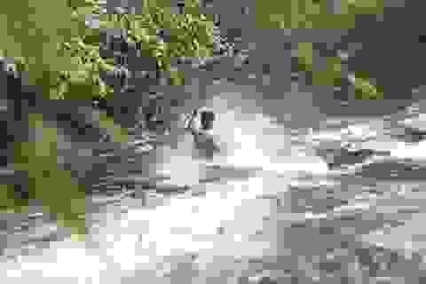 Ngoạn mục trượt thác 7 tầng ở Lâm Đồng