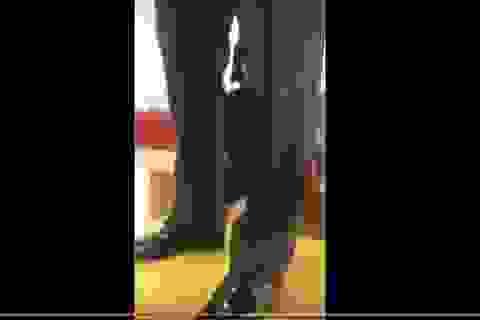 Hiệu trưởng xưng danh giáo sư đứng lên bàn quát, chửi tục học viên