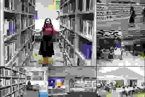 Sự khác biệt giữa nền giáo dục Việt Nam và Singapore