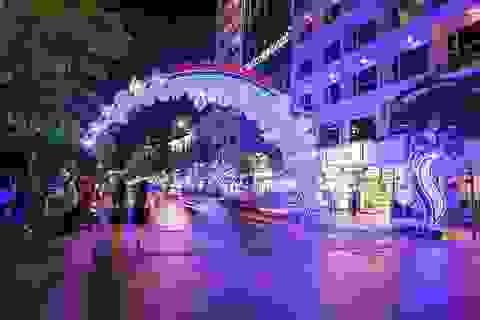 Sài Gòn rực rỡ chào xuân Đinh Dậu 2017