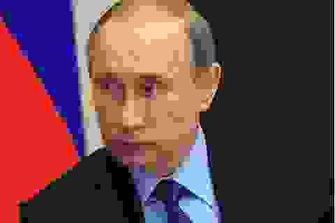 """""""Tôi nghĩ, tôi đến, chiến thắng và trở về"""" - phong cách Putin"""